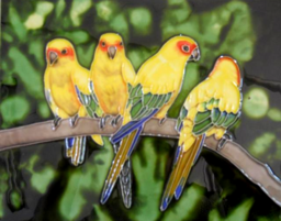 Tropical Birds Moving North to the UK | Climate Denial Crock of ...
